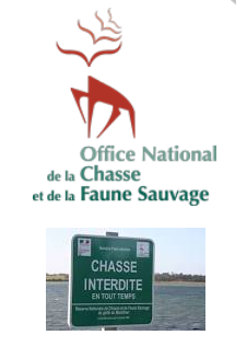 onfcs 56 chasse